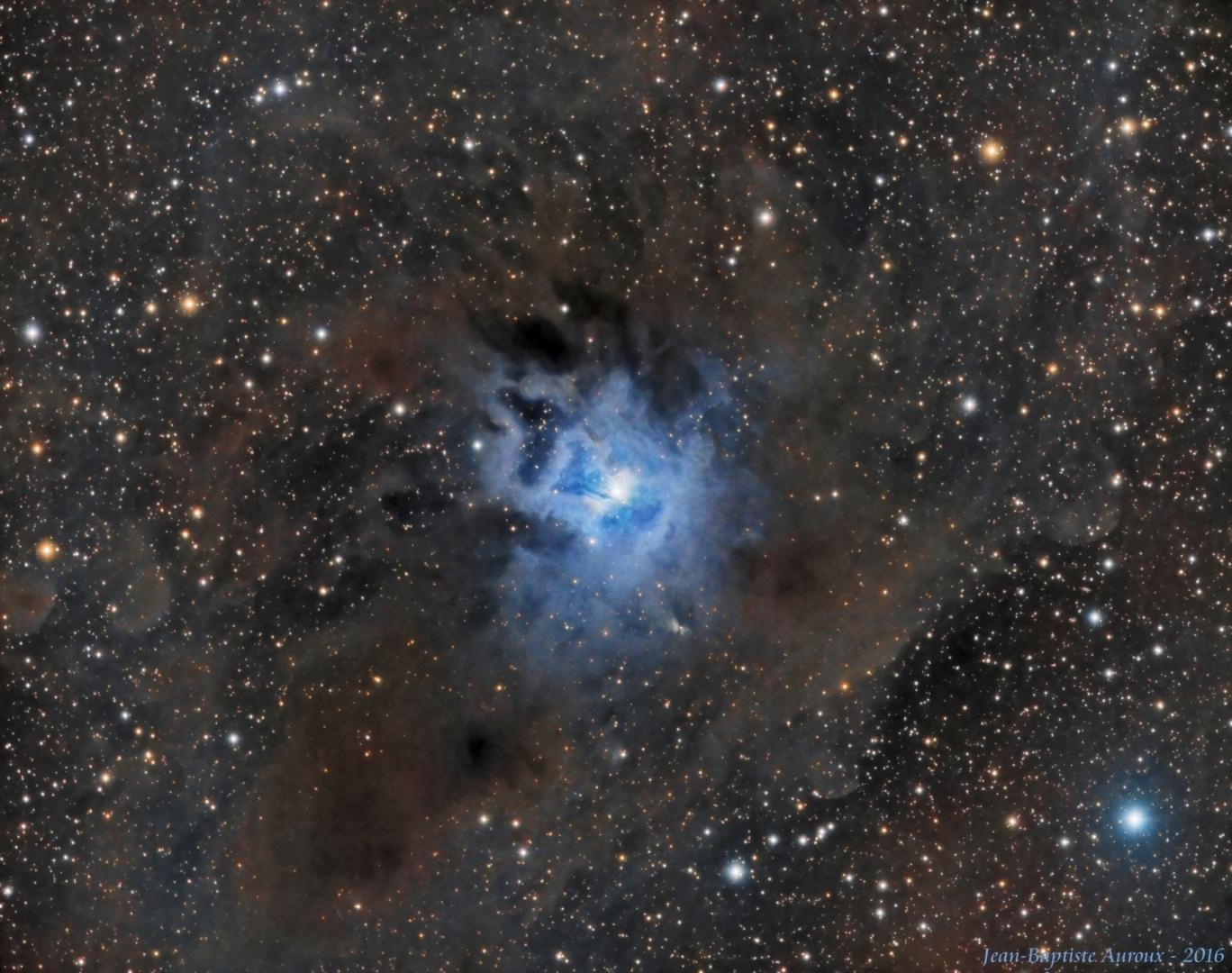 NGC 7023 – Nébuleuse de l'Iris