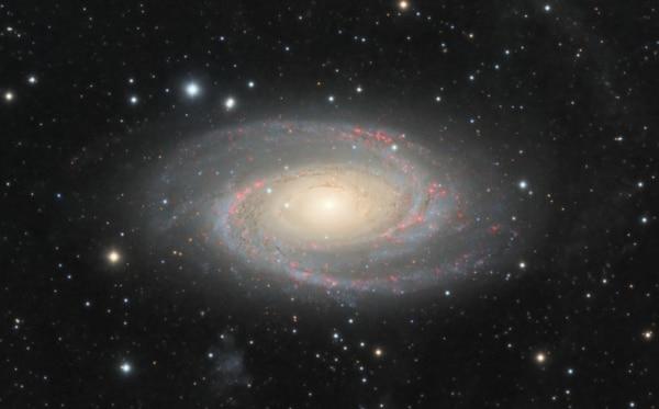 Galaxie M81